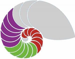 DHI Master-Stufe Hypnosekomplettausbildung