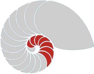 DHI Hypnoseausbildung Stufe 1