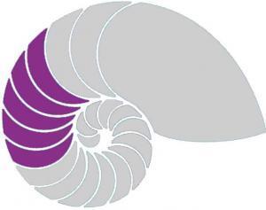 DHI Hypnoseausbildung Stufe 3