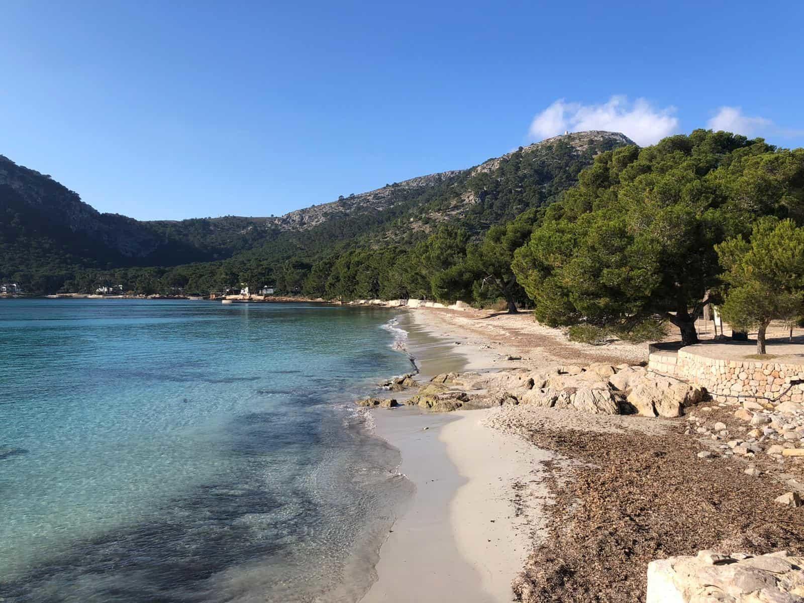 DHI Hypnoseseminare Mallorca, Arta